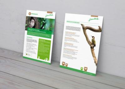 Grüner Zweig – Die Baumexperten